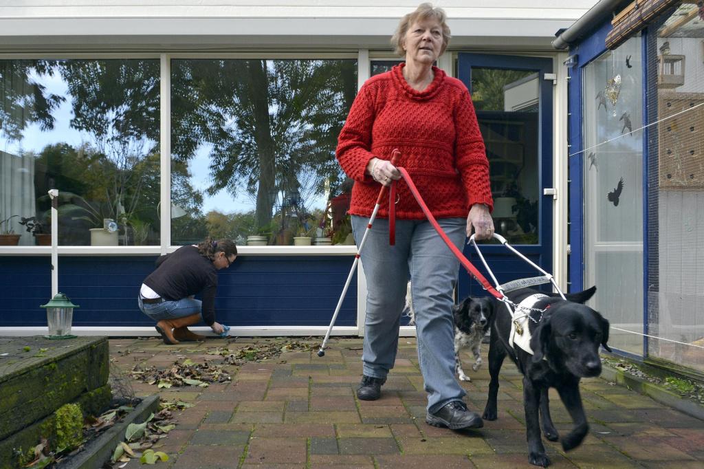 Tijdens het scholenproject oefent een leerling met het lopen met een blinde geleidestok.